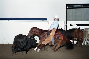 Primary view of object titled 'Cutting Horse Competition: Image 1997_D-3_21'.