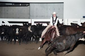 Primary view of object titled 'Cutting Horse Competition: Image 1997_D-4_16'.