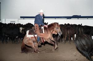 Primary view of object titled 'Cutting Horse Competition: Image 1997_D-5_29'.