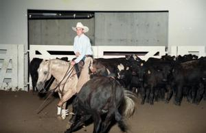 Primary view of object titled 'Cutting Horse Competition: Image 1997_D-602_01'.