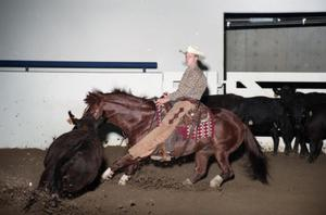 Primary view of object titled 'Cutting Horse Competition: Image 1997_D-602_10'.