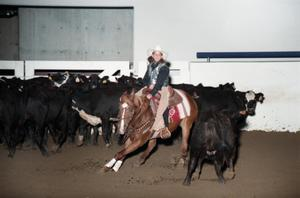Primary view of object titled 'Cutting Horse Competition: Image 1997_D-602_11'.
