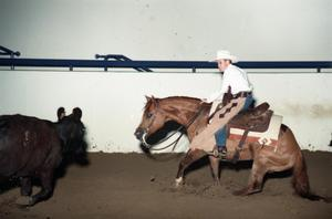 Primary view of object titled 'Cutting Horse Competition: Image 1997_D-602_15'.