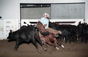 Primary view of object titled 'Cutting Horse Competition: Image 1997_D-604_08'.