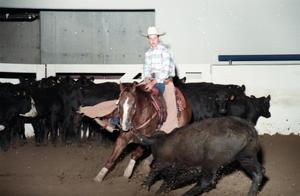 Primary view of object titled 'Cutting Horse Competition: Image 1997_D-6_02'.