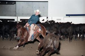 Primary view of object titled 'Cutting Horse Competition: Image 1997_D-6_13'.