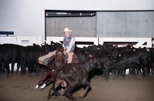 Primary view of object titled 'Cutting Horse Competition: Image 1997_D-6_21'.