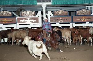 Primary view of object titled 'Cutting Horse Competition: Image 1997_D-99_13'.