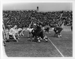 Primary view of object titled '[North Texas Homecoming Game, 1960]'.