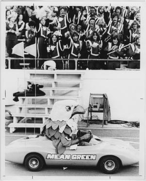 Primary view of object titled '[North Texas Mascot, 1979]'.
