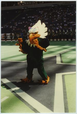 Primary view of object titled '[North Texas Mascot, 1995]'.