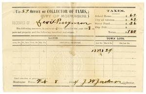 Primary view of [Receipt for taxes paid, February 8, 1894]