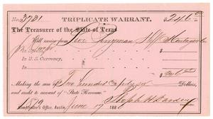 Primary view of object titled '[Triplicate Warrant, June 17, 1880]'.