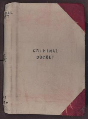 Primary view of object titled '[Criminal Docket, District Court, Cooke County, 1887-1908]'.