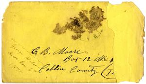 Primary view of object titled '[Envelope from George Wilson]'.