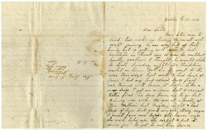 Primary view of object titled '[Letter from Dinkie McGee to Mary Ann Dodd Moore, October 27, 1876]'.