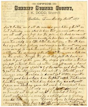 Primary view of [Letter from Matilda and William Dodd, November 19, 1877]