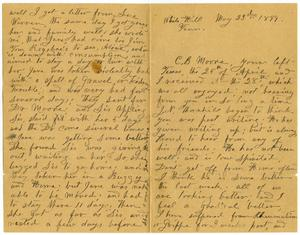 Primary view of object titled '[Letter from Sally Thornhill to the Moore family, May 23-24, 1899]'.