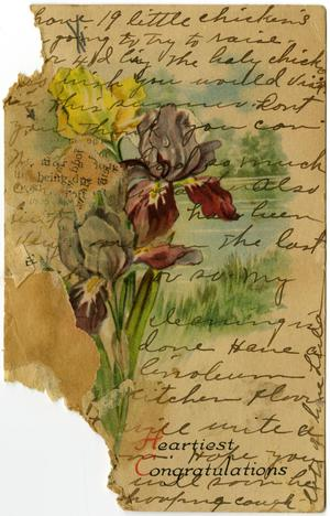Primary view of object titled '[Postcard from Lula Watkins to Linnet White, May 21, 1917]'.