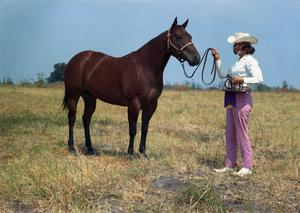 Primary view of object titled '[Pam Repkie with Horse]'.