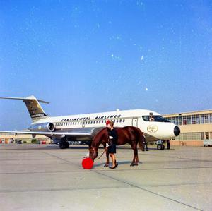 Primary view of object titled '[Woman with Horse by Airplane]'.