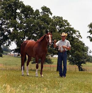 Primary view of object titled '[Dave Page with Chestnut Horse]'.