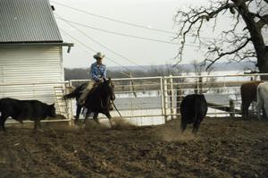 Primary view of object titled '[Jimbo Todo Riding Horse in Cow Pen]'.