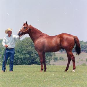 Primary view of object titled '[Billy Underwood with Horse]'.