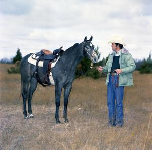 Primary view of object titled '[Horse on Mike Hughes Ranch]'.