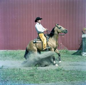 Primary view of object titled '[Dale Livingston or Bob Loomis on Horse]'.