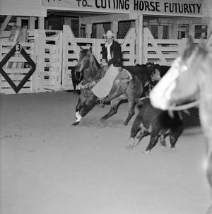 Primary view of object titled '[Participant at NCHA Futurity]'.