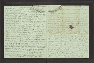 Primary view of object titled '[Entry from a Journal, May 1, 1860]'.