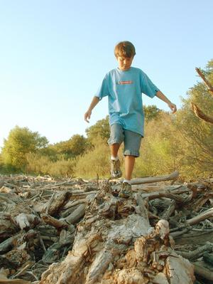 Primary view of object titled '[Boy walks on a pile of wood]'.
