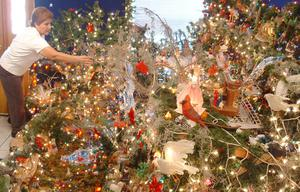 Primary view of object titled '[Woman arranges the decorations on a Christmas tree]'.