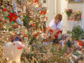 [Woman arranges the Christmas decorations]