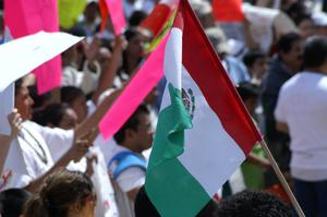 Primary view of object titled '[The Mexican flag is carried by a protester]'.