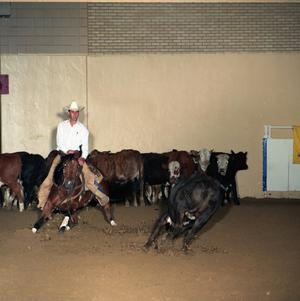 Primary view of object titled 'Cutting Horse Competition: Image 1991_D-10_01'.