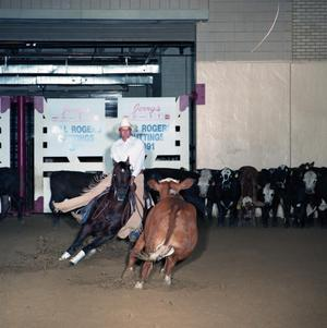 Primary view of object titled 'Cutting Horse Competition: Image 1991_D-10_05'.