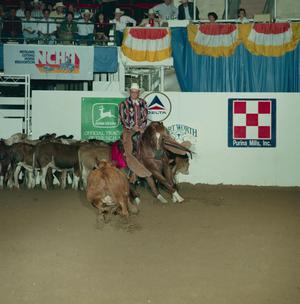 Primary view of object titled '[Cutting Horse Competition: Image 1991_D-113_05]'.