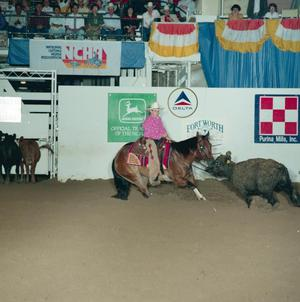 Primary view of object titled '[Cutting Horse Competition: Image 1991_D-114_01]'.