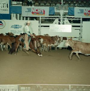 Primary view of object titled '[Cutting Horse Competition: Ima Southern Lena #1]'.