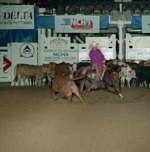 Primary view of object titled 'Cutting Horse Competition: Image 1991_D-145_09'.