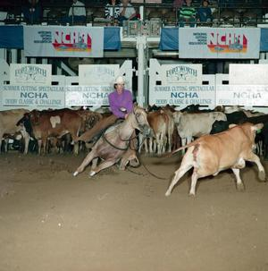 Primary view of object titled 'Cutting Horse Competition: Image 1991_D-146_12'.