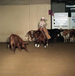 Primary view of object titled 'Cutting Horse Competition: Image 1991_D-14_04'.