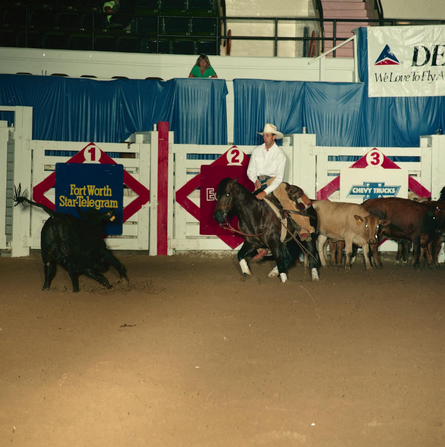 [Cutting Horse Competition: Haidas Satin Cat #2]                                                                                                      [Sequence #]: 1 of 1