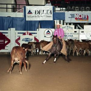 Primary view of object titled 'Cutting Horse Competition: Image 1991_D-200_11'.