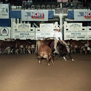 Primary view of object titled 'Cutting Horse Competition: Image 1991_D-204_11'.