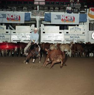 Primary view of object titled 'Cutting Horse Competition: Image 1991_D-211_12'.