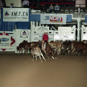 Primary view of object titled 'Cutting Horse Competition: Image 1991_D-217_05'.