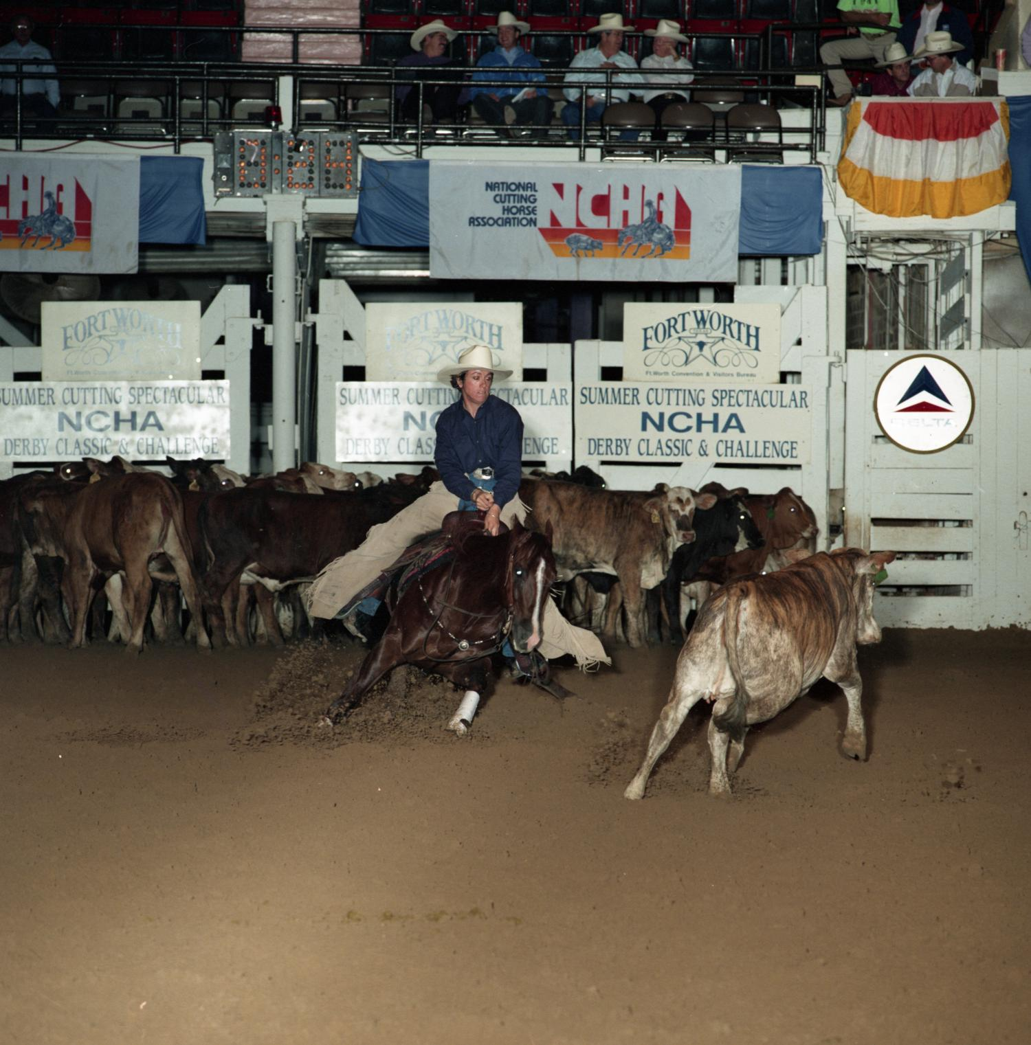 Cutting Horse Competition: Image 1991_D-218_06                                                                                                      [Sequence #]: 1 of 1